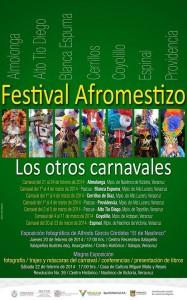 Cartel Festival Afromestizo
