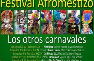 Festival afromestizo veracruzano 2014